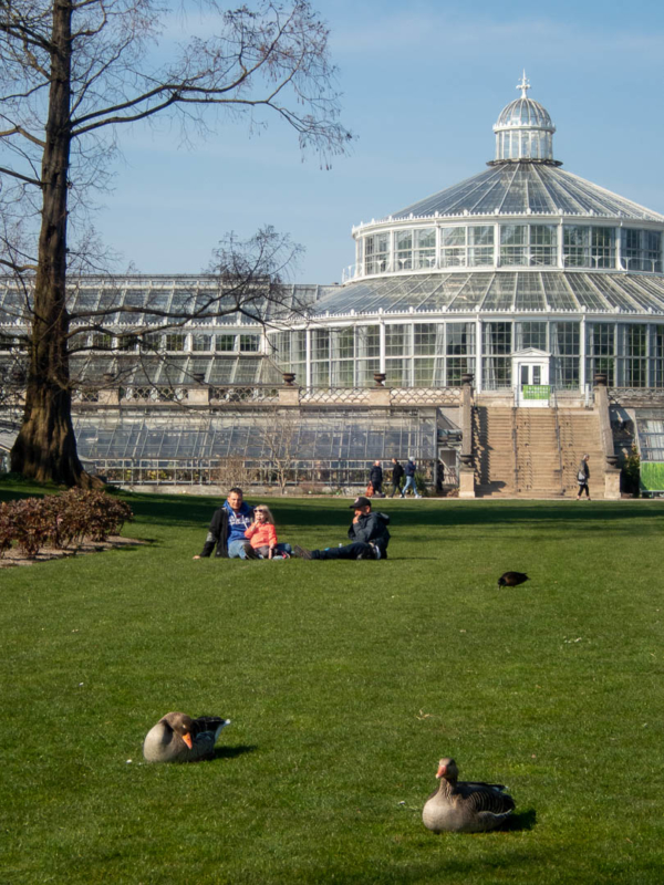 pelouses et serre du jardin botanique de Copenhague
