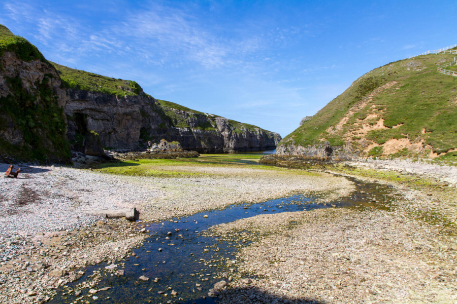paysage d'une ria à marée basse